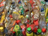 La pollution plastique